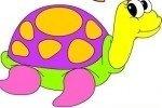 Coloriage de tortues