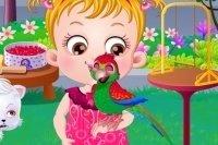 Perroquet Bébé Hazel