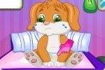 Prendre soin du petit chien