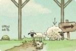 Ramener les moutons