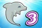 Spectacle de dauphins 3